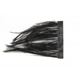 Plume effilée noire, par 10cm