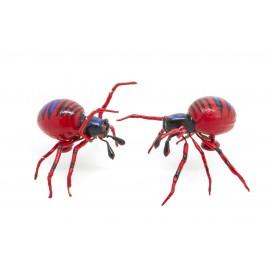 Aimant Araignée rouge